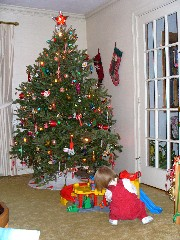 Amy playing in front of the tree